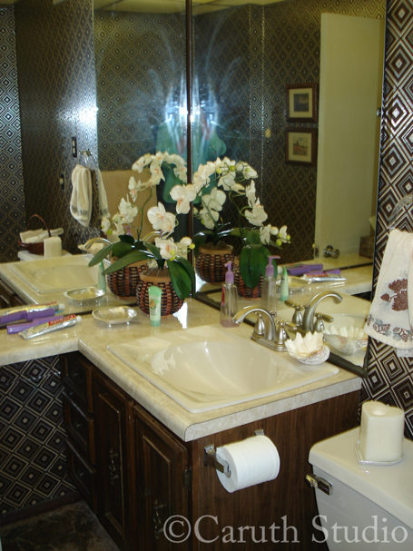Bathroom-before-makeover-3