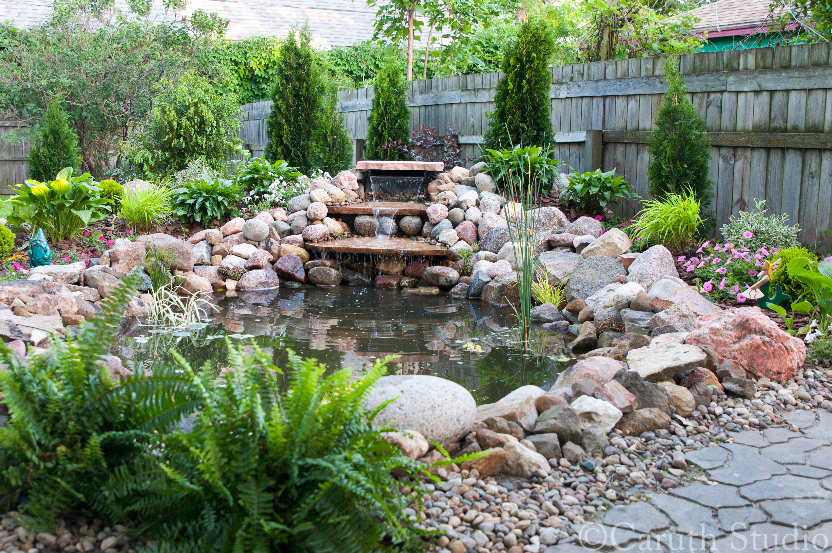 Finished pond overall