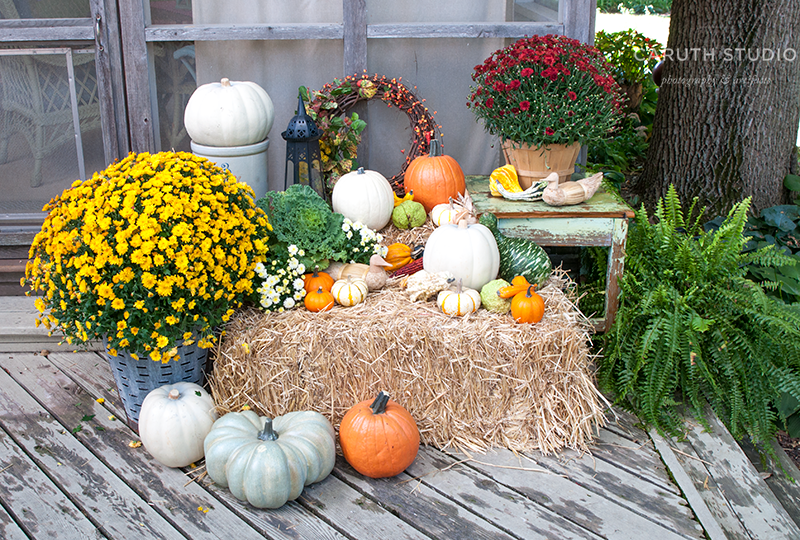 Pumpkins, gourds, and mums on and around straw bale