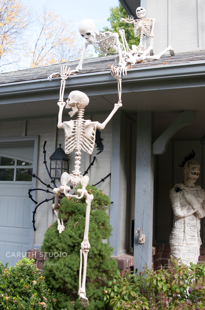 Smiling Skeleton trying to climb to the roof using a shrub as support