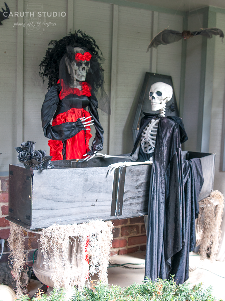 Two Skeletons at a funeral one dressed in a coffin the other wearing a red dress presiding