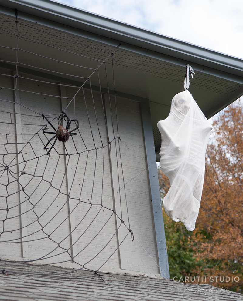 Skeleton wrapped in spider webs like meal saved for later