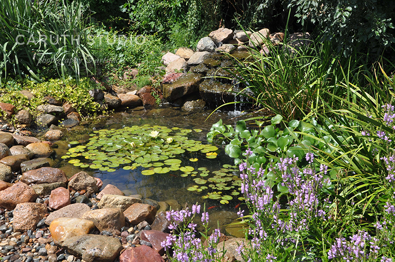 Natural style pond