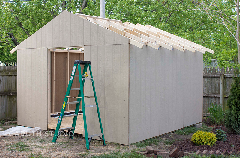 Shed with walls and trusses