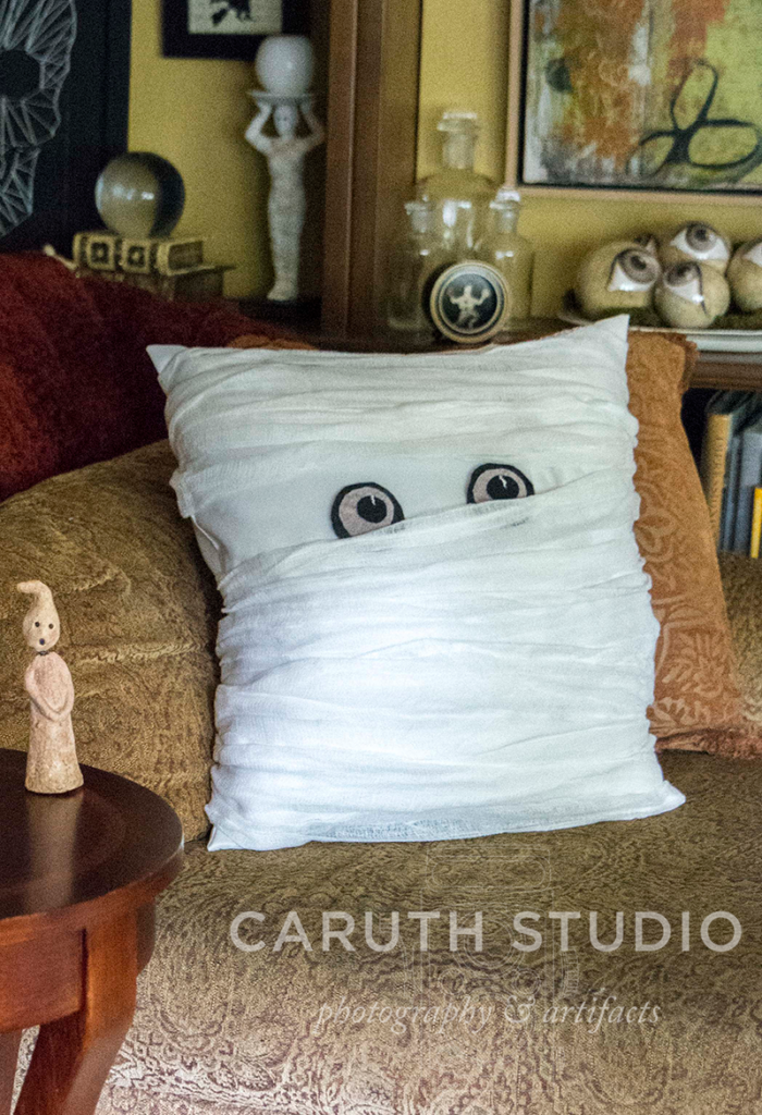 mummy pillow on the chaise in front of the bookcases