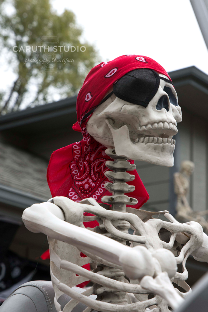 Captian Jack skeleton in command of his ship, enjoying the ride with his one good eye, the other covered by a black eyepatch and red headscarf