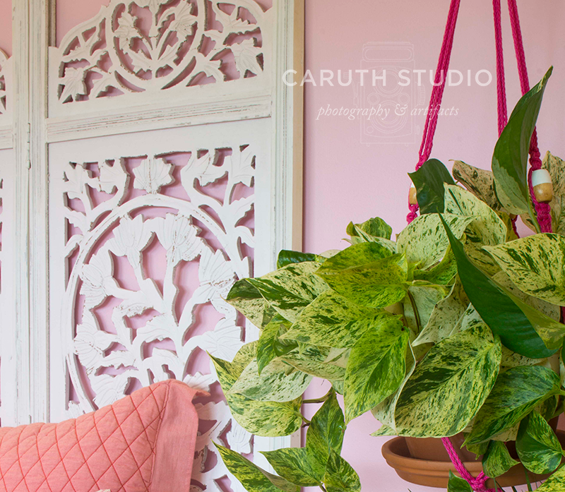 detail of a hanging plant with wood carved screen headboard and pink pillows in the background