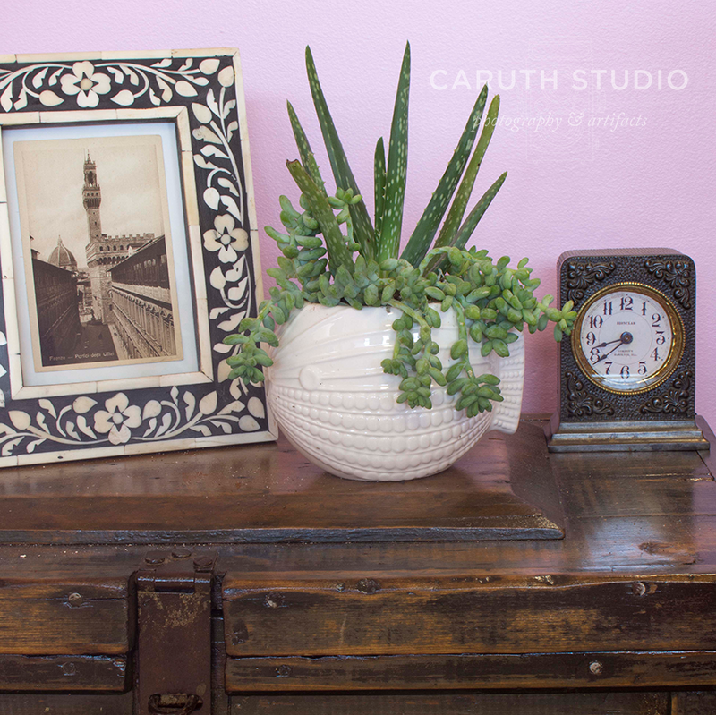 detail of the top of bedside table with framed picture, potted succulents and a small clock