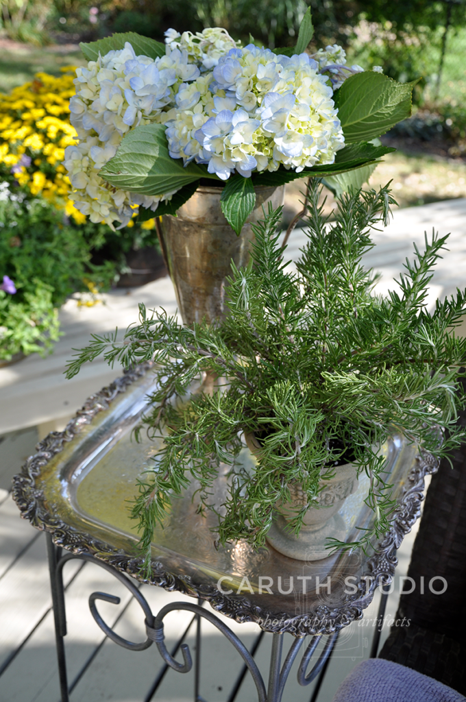 Tray topped table with potted rosemary